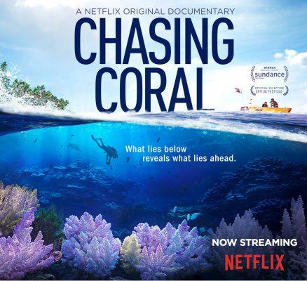 Chasing Coral - Netflix Dokumentation über das Verschwinden der natürlichen Riffe