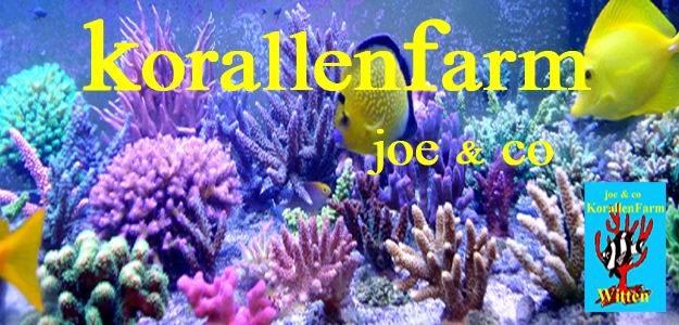 Joes KorallenFarmShop Witten