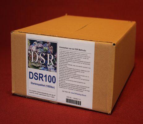 DSR Methode