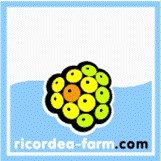 FarmerShops