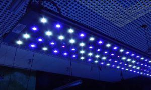 Reef Light LED 2019 – 120 cm