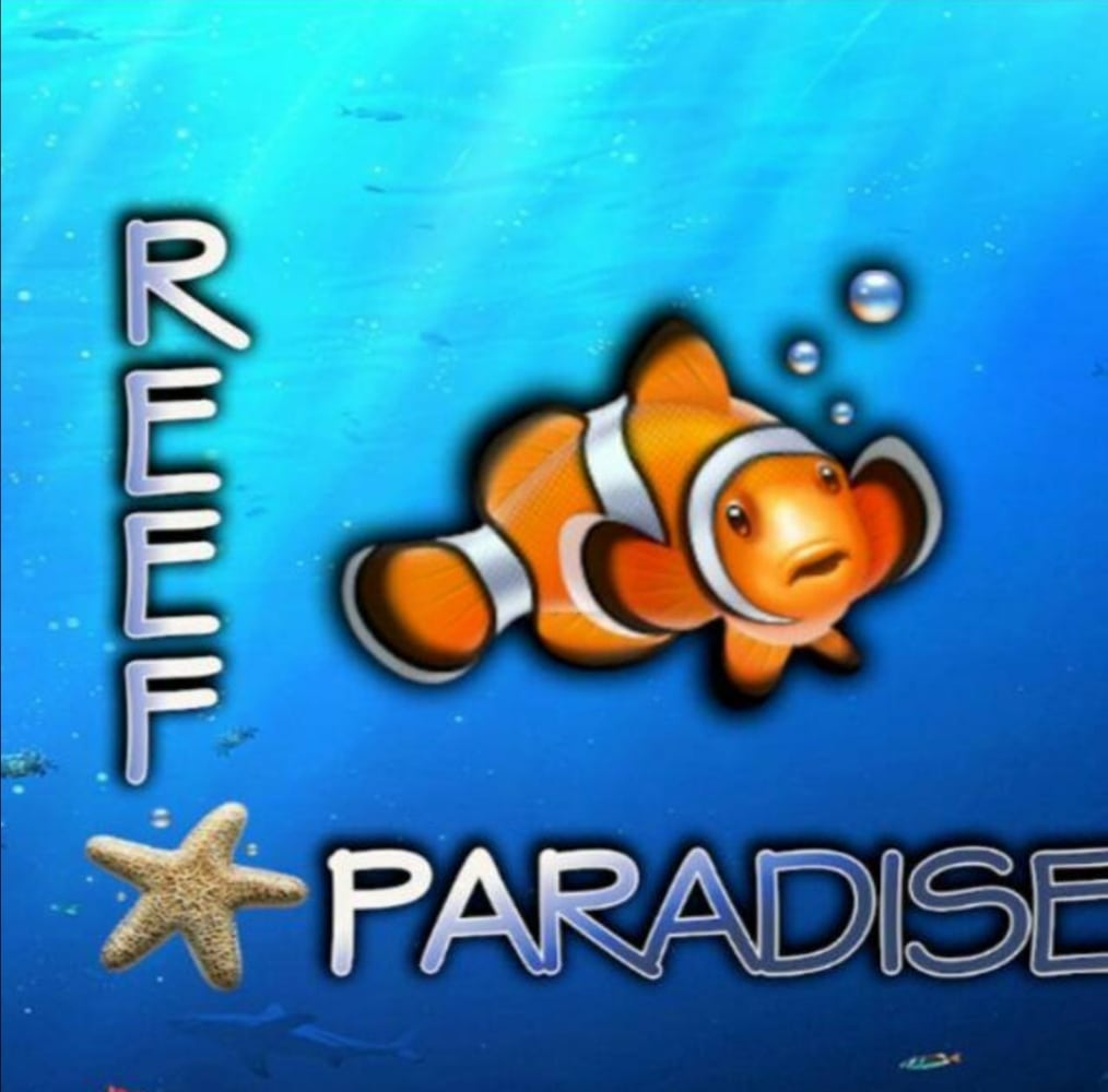 Reef Paradise