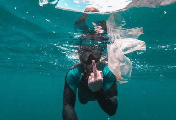Nachhaltiges und umweltfreundliches Verpacken von Korallen