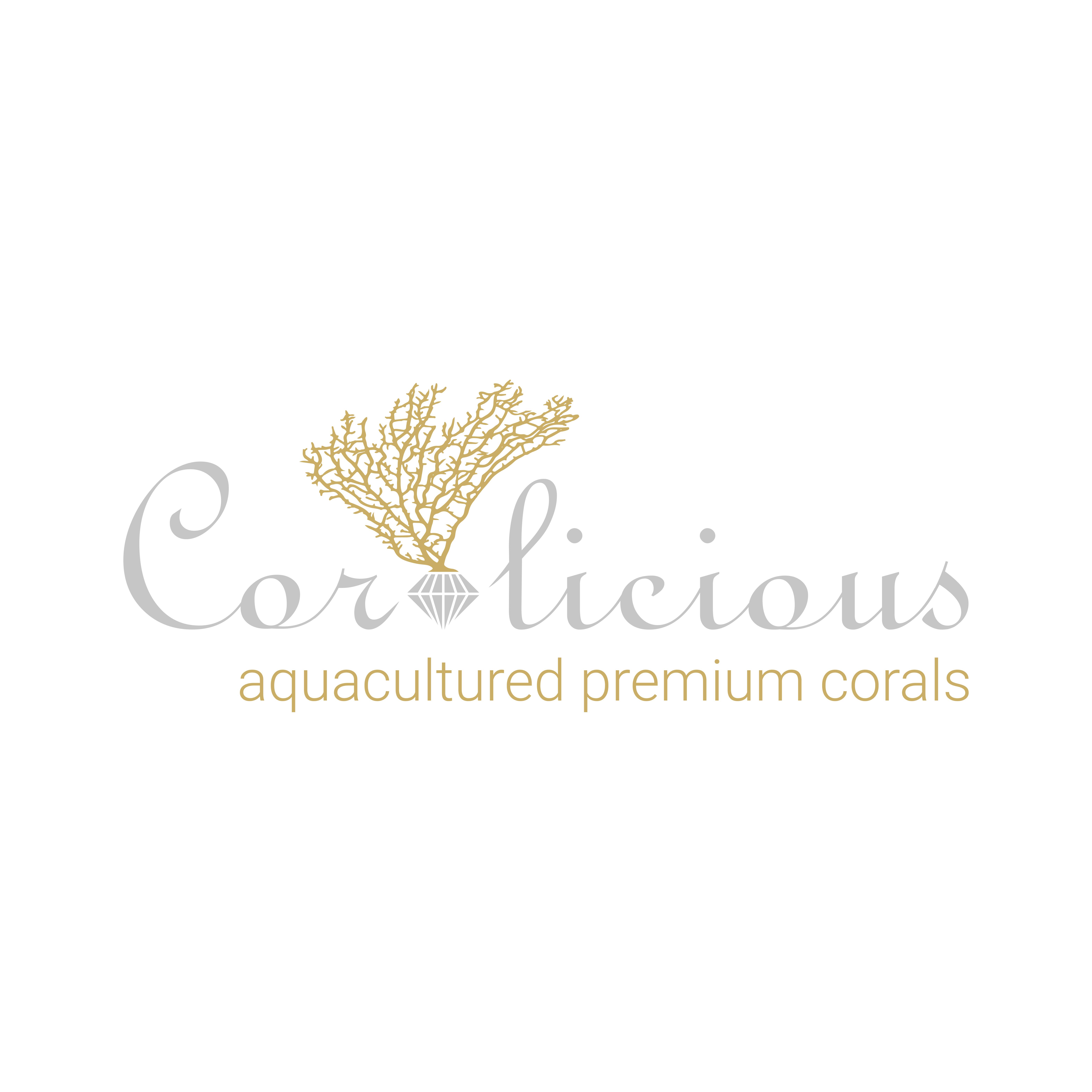 Coralicious